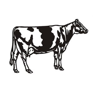 Cow decorative wall mount