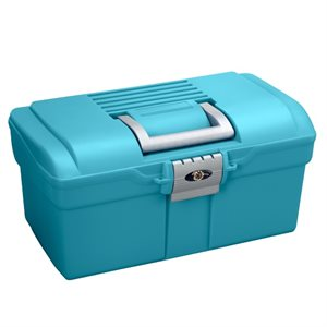 Small grooming case, Blue & Grey handle