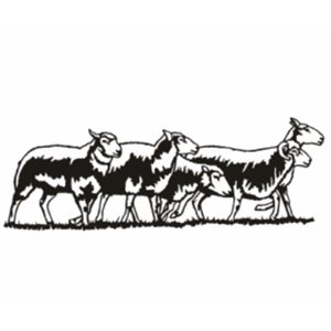 Décoration murale moutons