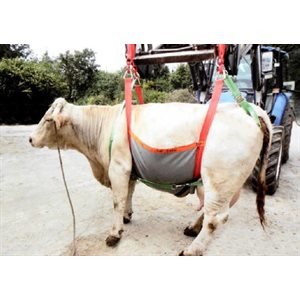 Harness for cattle 1200 kg